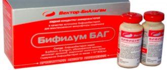 бифидум баг жидкий пробиотик