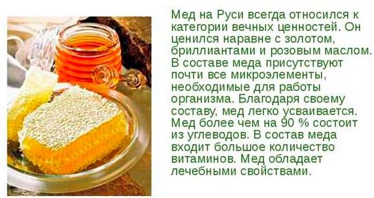 Мед при гастрите и язве желудка - употребляем правильно
