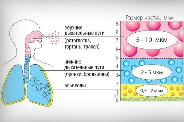 Размер частичек для ингаляции